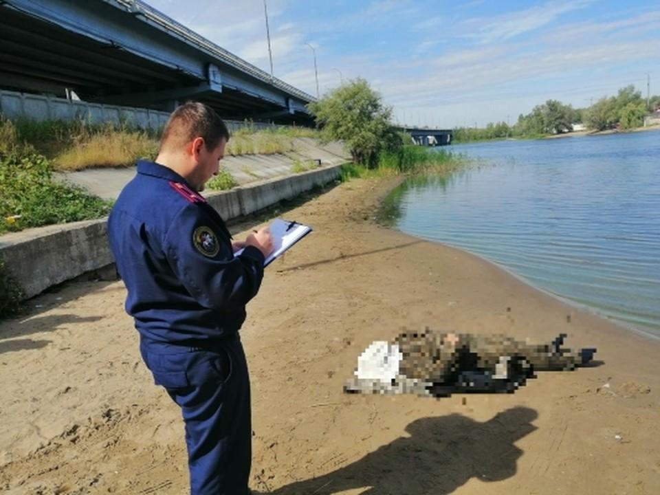Сотрудники СК осмотрели место происшествия и тело