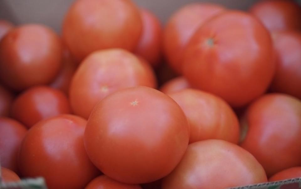 Почти 4 тонны нелегальных томатов уничтожили под Смоленском.