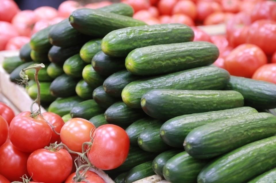 В Башкирии фиксируется рост цен на огурцы и помидоры