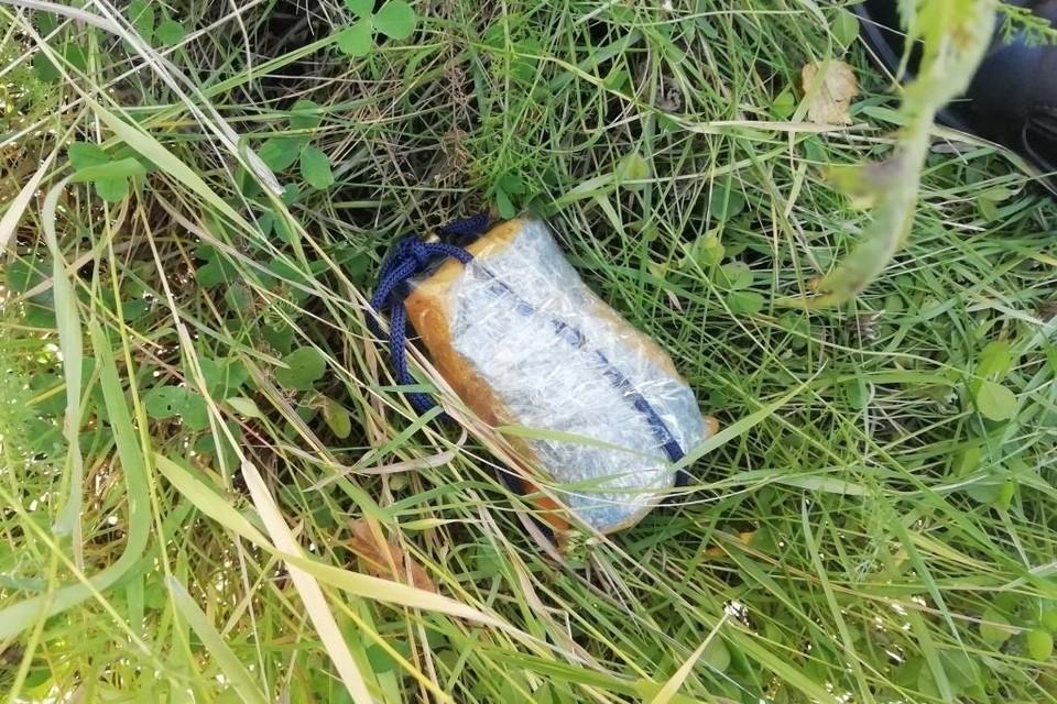 Неизвестный пытался перекинуть в колонию мобильные телефоны. Фото: УФСИН по Мурманской области