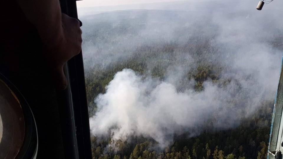 Фото: пресс-служба ГУ МЧС по Краснодарскому краю