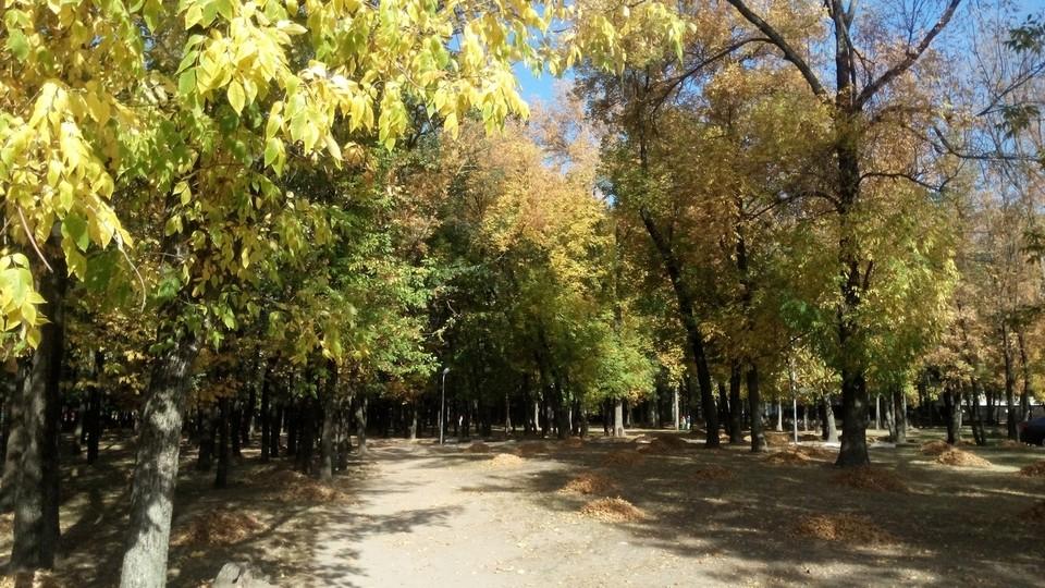 В Белгородской области похолодает, но сохранится ясная погода.