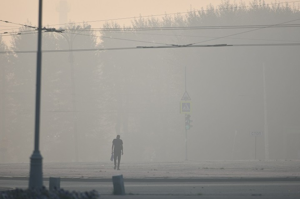 Водители жалуются, что из-за дыма на Ново-Московском тракте видимость стала плохой