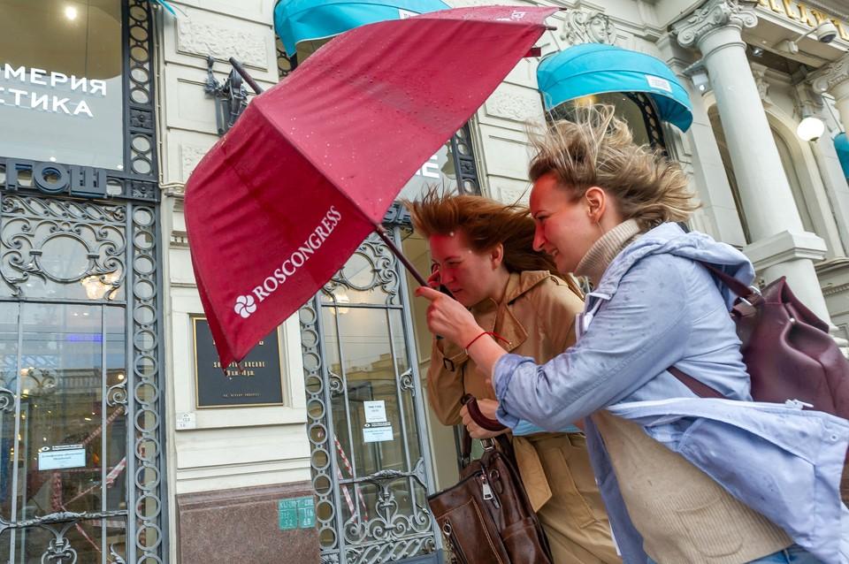 Сильный ветер и дожди придут в Петербург 14 сентября