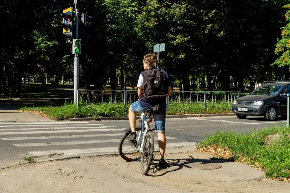 На улице Горького тоже появятся велодорожки