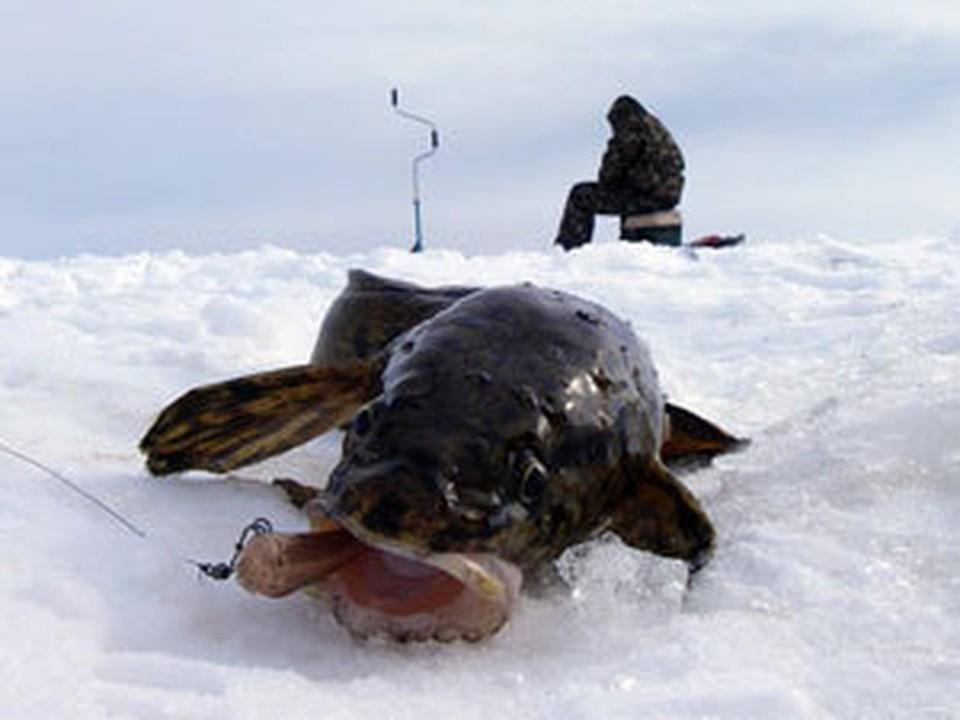 Ловись рыбка большая и маленькая.