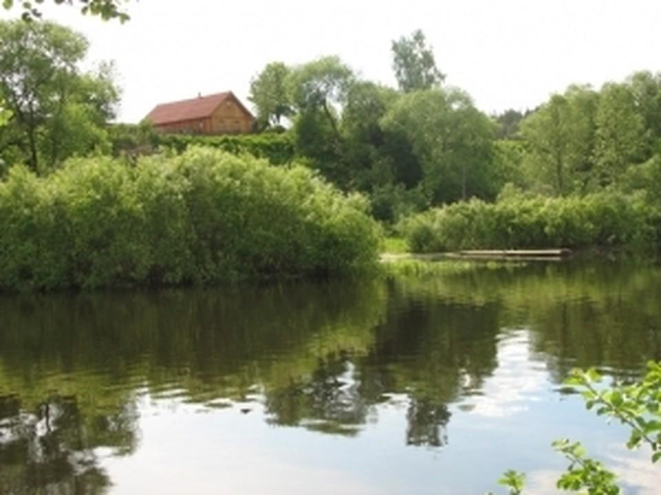 Убийство произошло на берегу живописной реки Тишерек