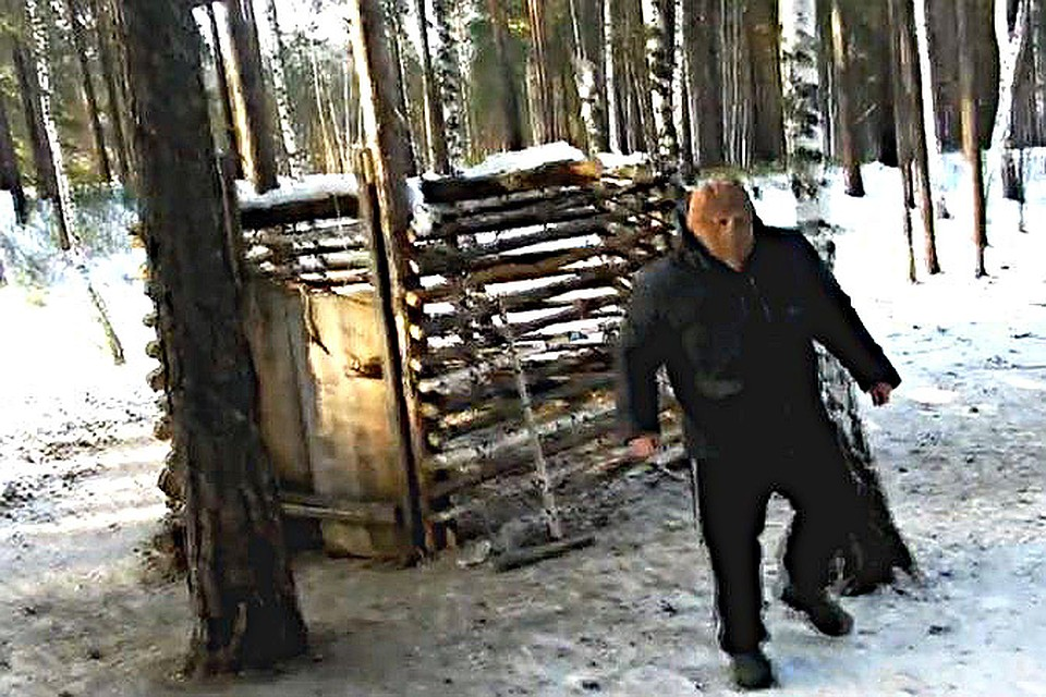 Работа егерем или лесником в омской области