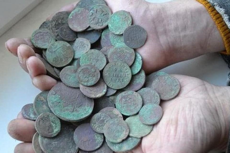 На месте будущего динопарка рабочие нашли старинные монеты.