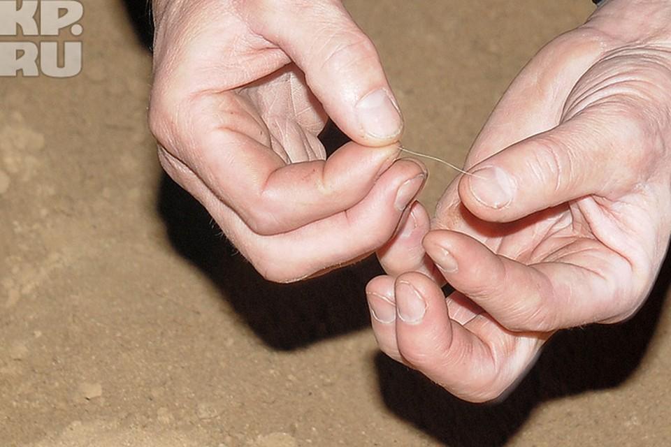 Эти шерстинки нашли в Азасской пещере год назад, и это их анализ ДНК теперь ученые закончили.