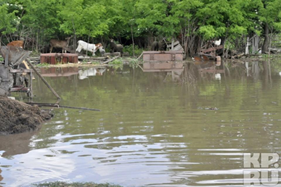 Наводнение в Крымске унесло жизни 153 человек, сотни домов оказались разрушены