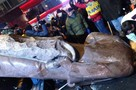 Ленина на Майдане разбили кувалдой и растащили на сувениры