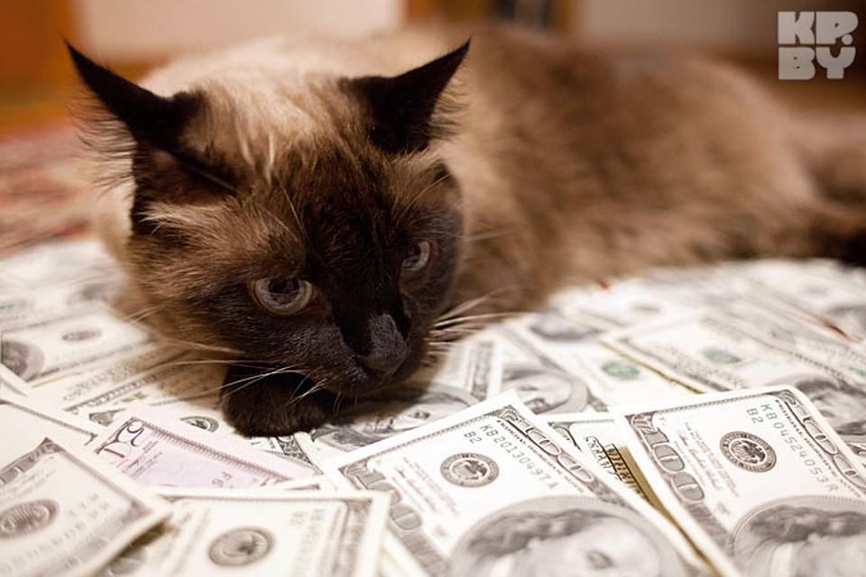 кредит без справки о доходах иркутск возврат беспроцентного займа учредителю