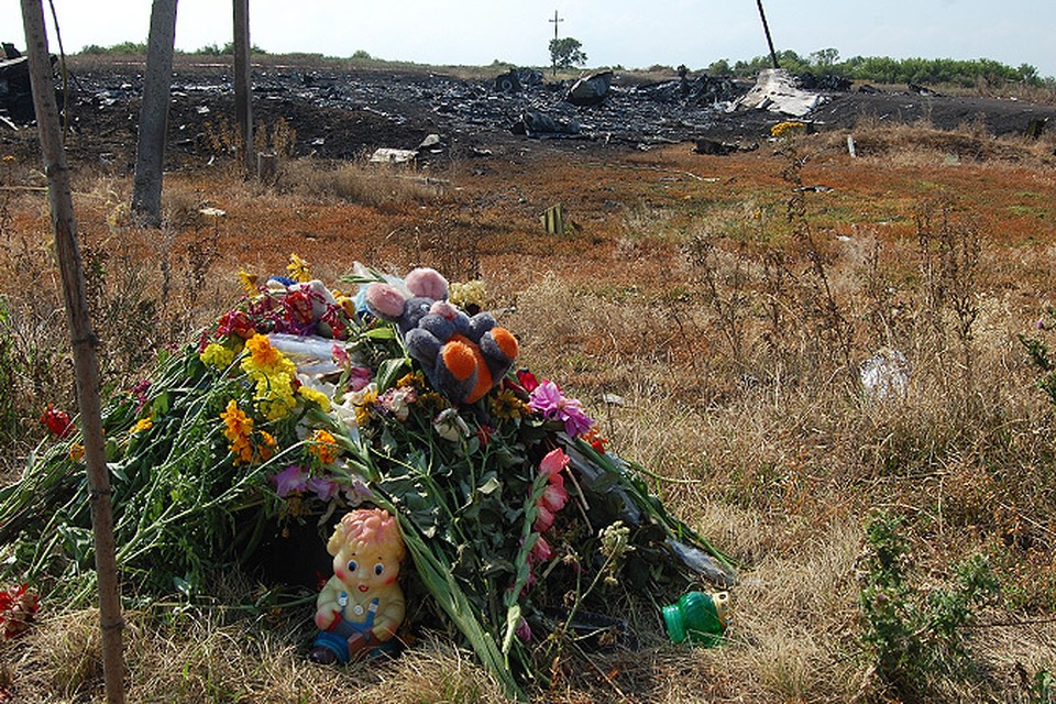 """Очевидцы катастрофы малайзийского """"Боинга"""":  Упади самолет на сто метров ближе - жертв было бы в два раза больше"""