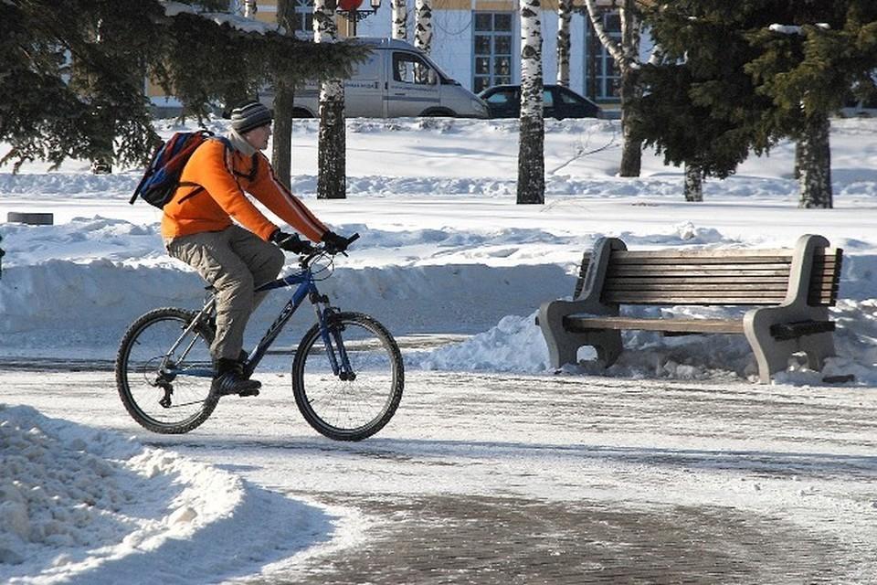 Возбуждено уголовное дело по факту мошенничества при строительстве велодорожек в Ижевске.