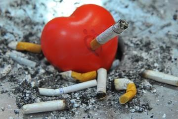"""Красная звезда"" спалила брови и тягу к табаку"