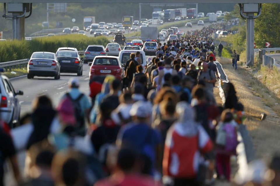 Австрия и ФРГ пустят беженцев к себе