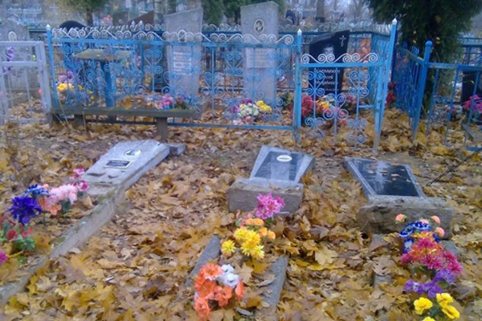Более 60 могил в Полоцке пострадали от рук педагога и двоих подростков. Фото: Следственный комитет.