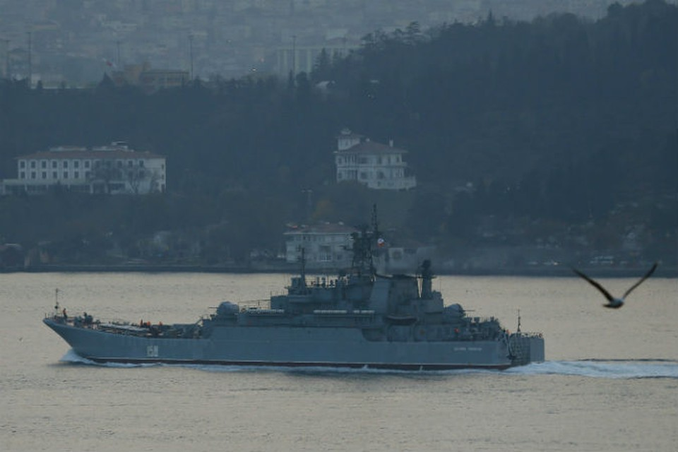 большой десантный корабль (БДК) «Цезарь Куников»