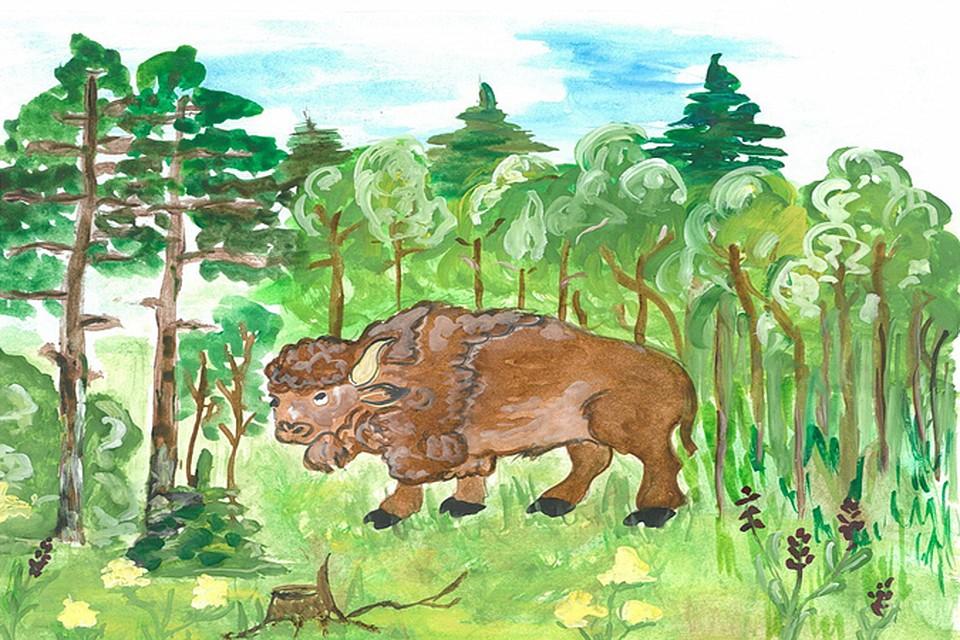вырастет рисунок животные лесов россии фалтояно помылась душе
