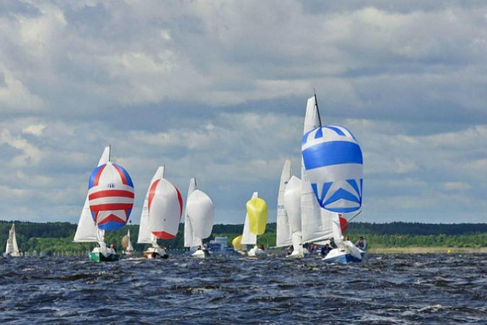 Фото: Федерация парусного спорта России