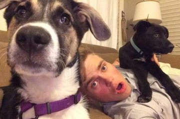 Собачья жизнь: Как живут сочинские щенки в США