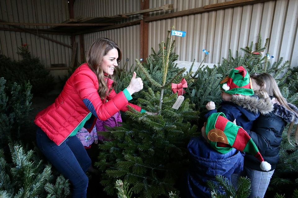 Герцогиня Кембриджская Кэтрин посетила поместье Питерли в графстве Бакингемшир и выбрала рождественские елки для детей