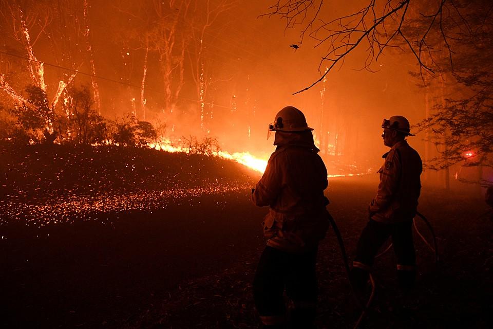 Более 680 жилых домов оказались уничтожены продолжающимися полтора месяца лесными пожарами на восточном побережье Австралии