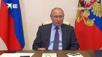 Путин - о лесном хозяйстве