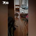 В жилом доме Екатеринбурге взорвался самогонный аппарат