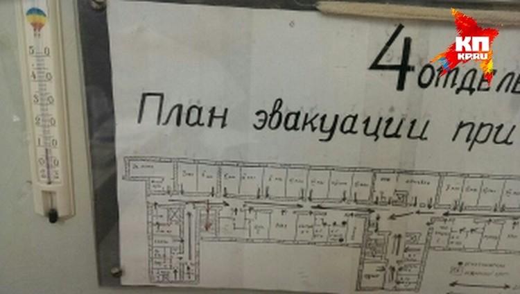 В палатах +9