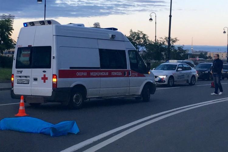 Слоним перебегал дорогу в неположенном месте Фото: ДТП и ЧП (Вконтакте)