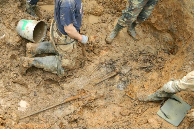 Поисковики нашли останки солдата Фото: Предоставил Евгений Шаповалов