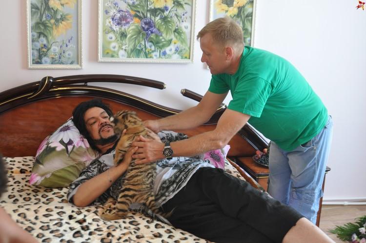 Директор зоопарка Олег Зубков принес Киркорову в номер львят и тигрят.