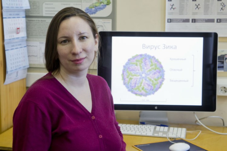 Иркутские молекулярные биологи строят воздействие на вирус на данных о его геноме.