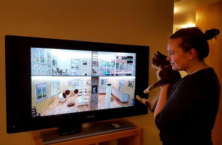 Владельцы котов уверены, что шоу должно понравиться их любимцам. Фото: Facebook @Kattarshians