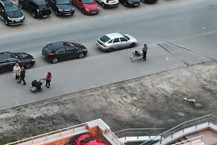 Так они и гуляли: с ребенком в коляске и псом в тележке. Фото: Соцсети