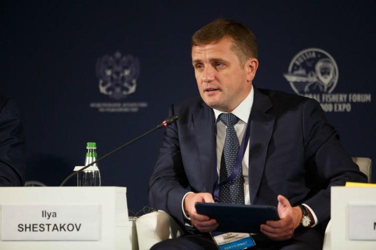 По словам Ильи Шестакова, работа над реализацией новой стратегии уже началась