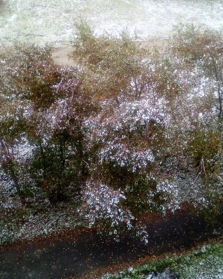Поздравляем уральцев с первым снегом!