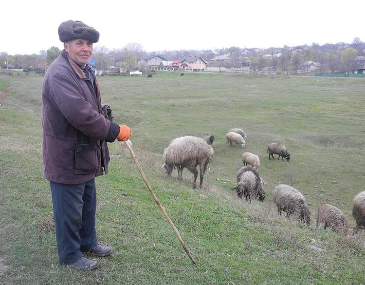 Европа даёт Молдове гранты на развитие сельского хозяйства