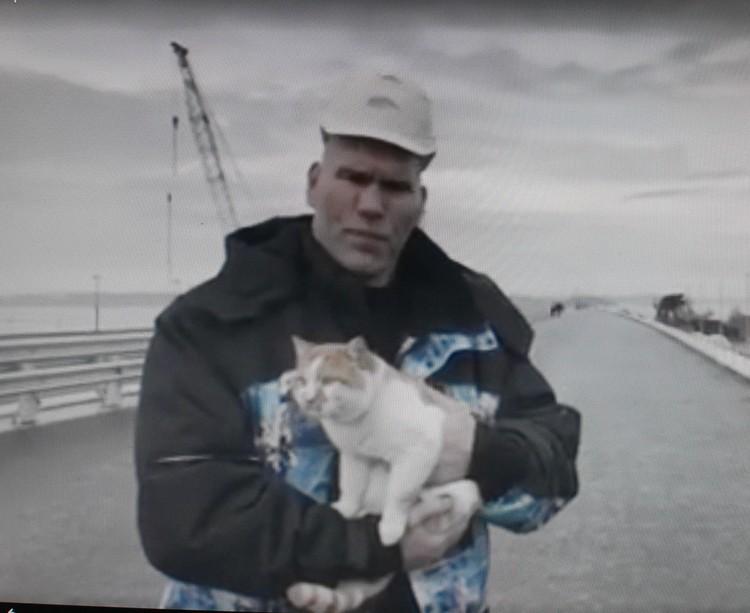 Рыжему коту уютно в сильных руках боксера-профессионала. Фото: кадр с видео.