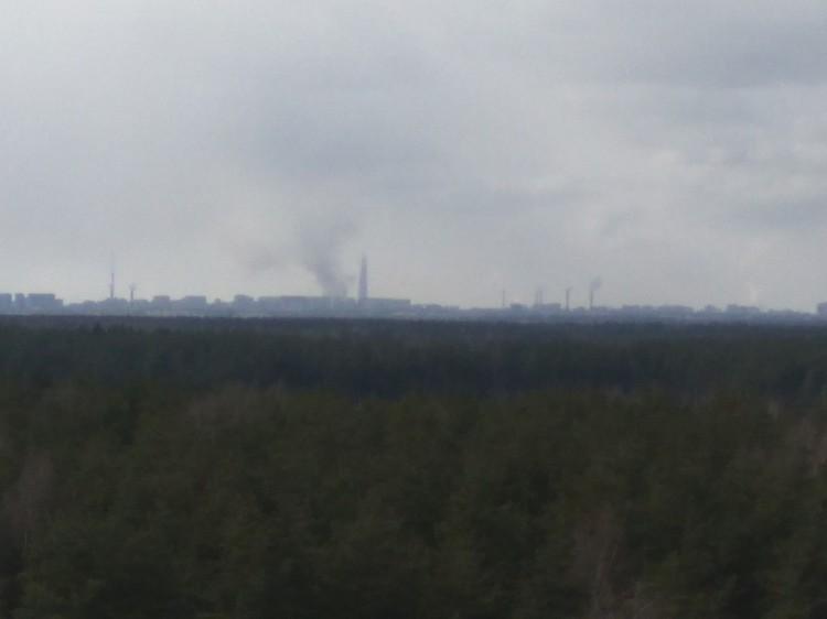 Вид из Всеволожска. ФОТО: ДТП и ЧП/ВКонтакте