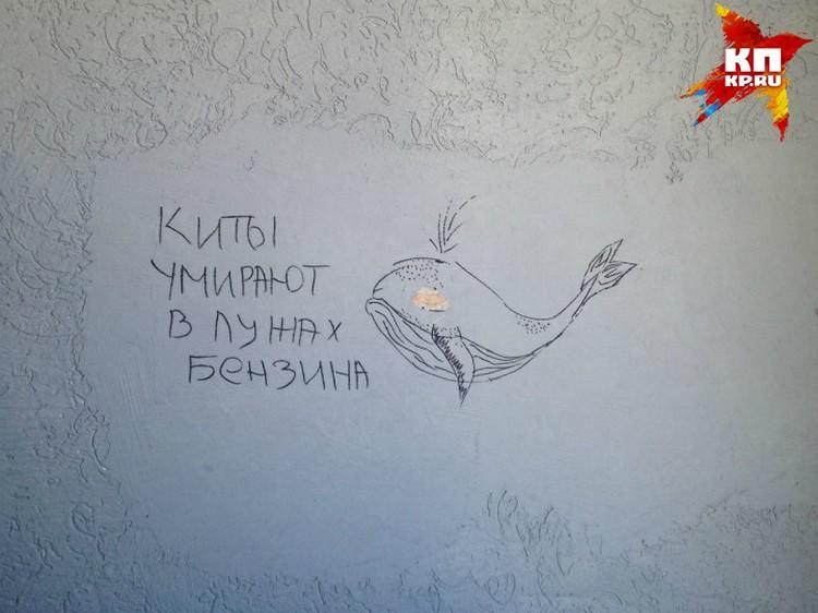 Такими рисунками исписан весь подъезд подозреваемого