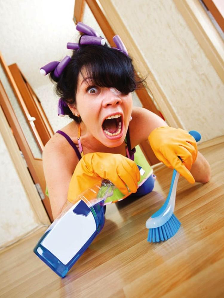 Чем чаще хозяйка моет полы, тем меньше блох на ней.