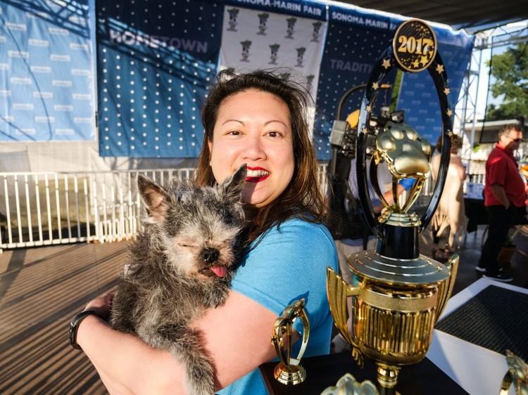 Китайская хохлатая собака по кличке Ти Ти. Заслуженное второе место. Фото: Sonoma-Marin Fair