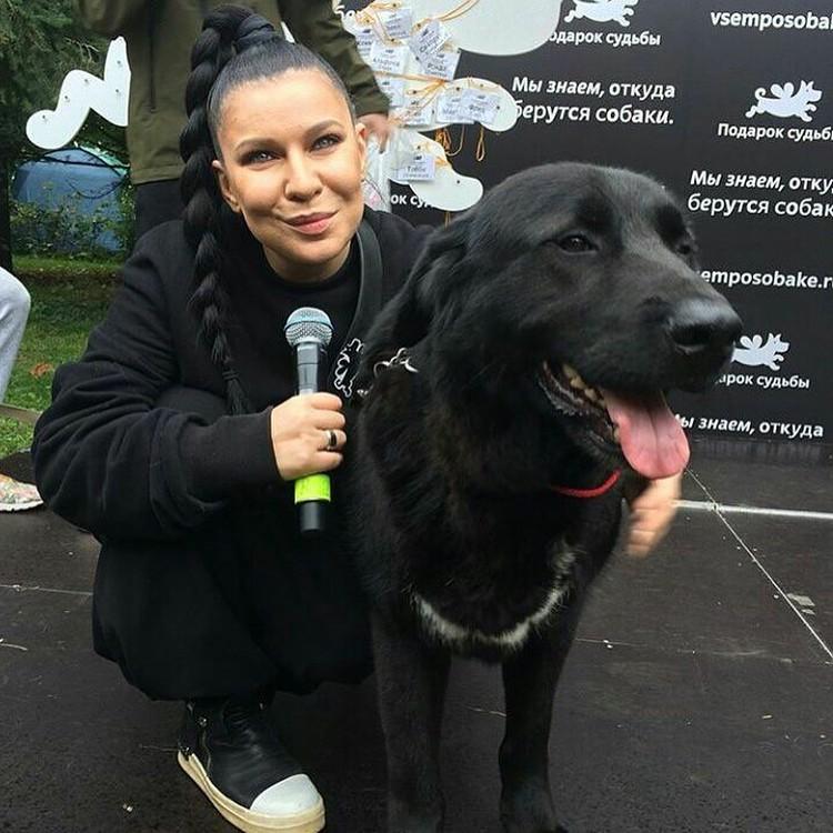 Ёлка делают всё, чтобы о фонде собак узнало как можно больше людей и привлекает друзей-звезд помогать ей