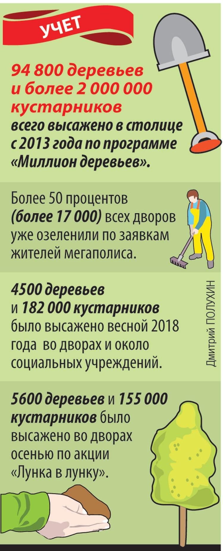 """94800 деревьев и более 2000000 кустарников всего высажено в столице с 2013 года по программе """"Миллион деревьев""""."""