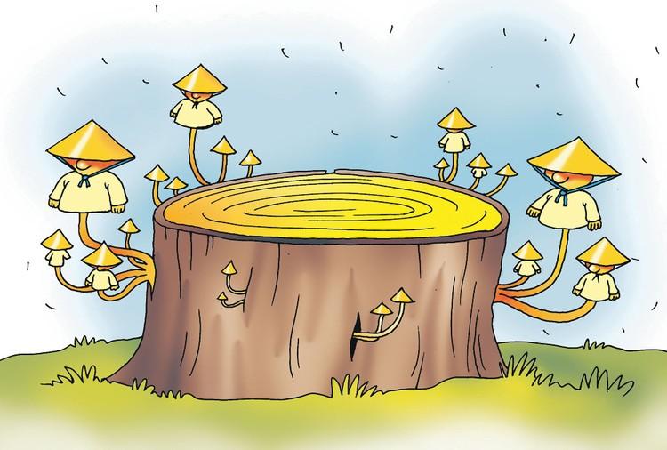 Почему мы не бережем свои природные богатства?