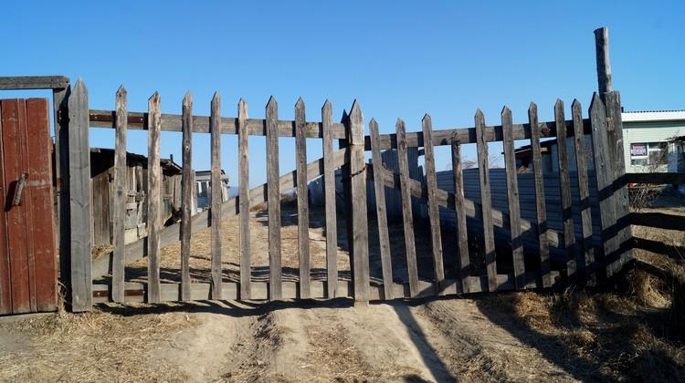 Вход в приют преграждают цепь и замок, висящие на воротах.