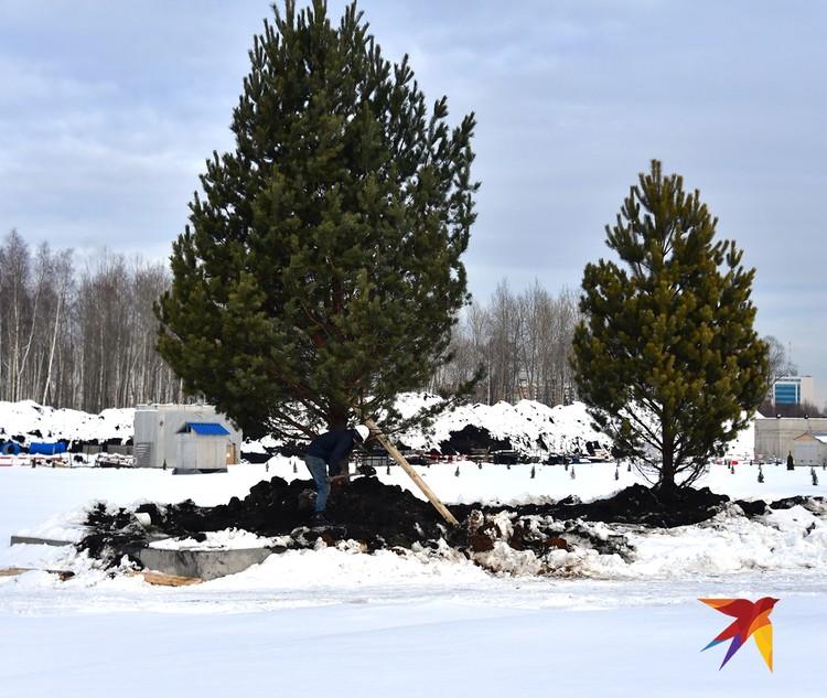 Одновременно с парком аттракционов откроется ландшафтный парк.